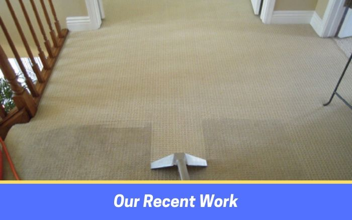 Carpet Cleaning by cleanwee cleaning service